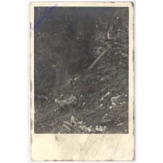 AK193672